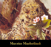Maurice Maeterlinck -